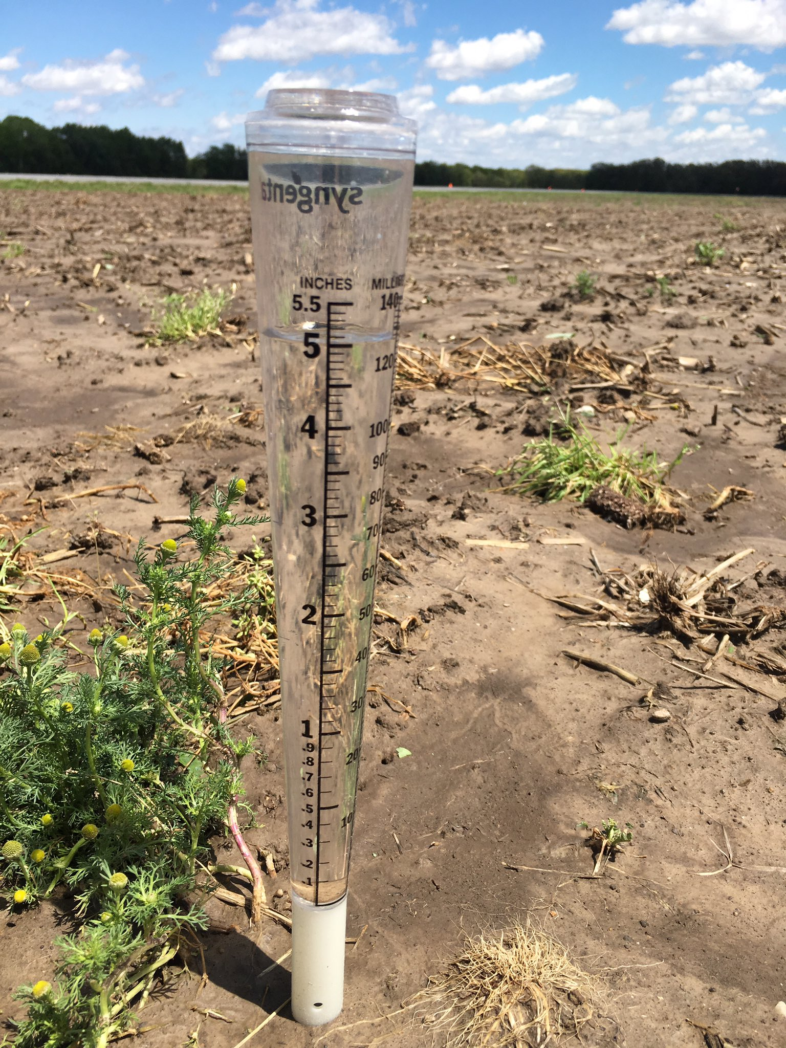 """This agronomic image shows a rain gauge with just over 5"""" of rainfall from April 26 through May 2, 2017"""