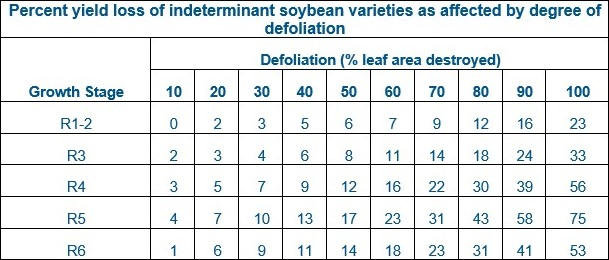 This chart shows soybean yield loss from defoliation.