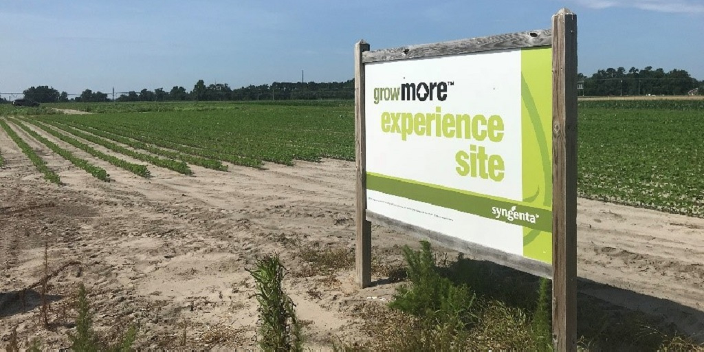 This agronomic image shows a sign for the Kinston, North Carolina Grow More Experience site.