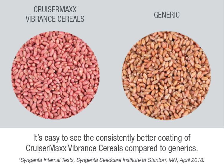 This image shows CruiserMaxx Vibrance seeds and generic seeds.