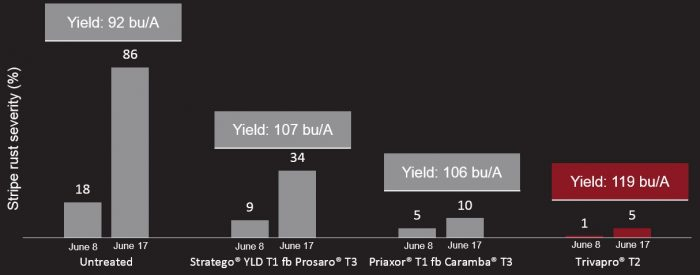 This agronomic image compares yield rates between fungicides.