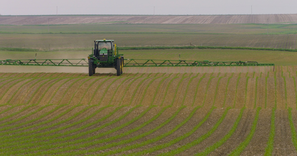 A sprayer applies herbicide to a corn field.