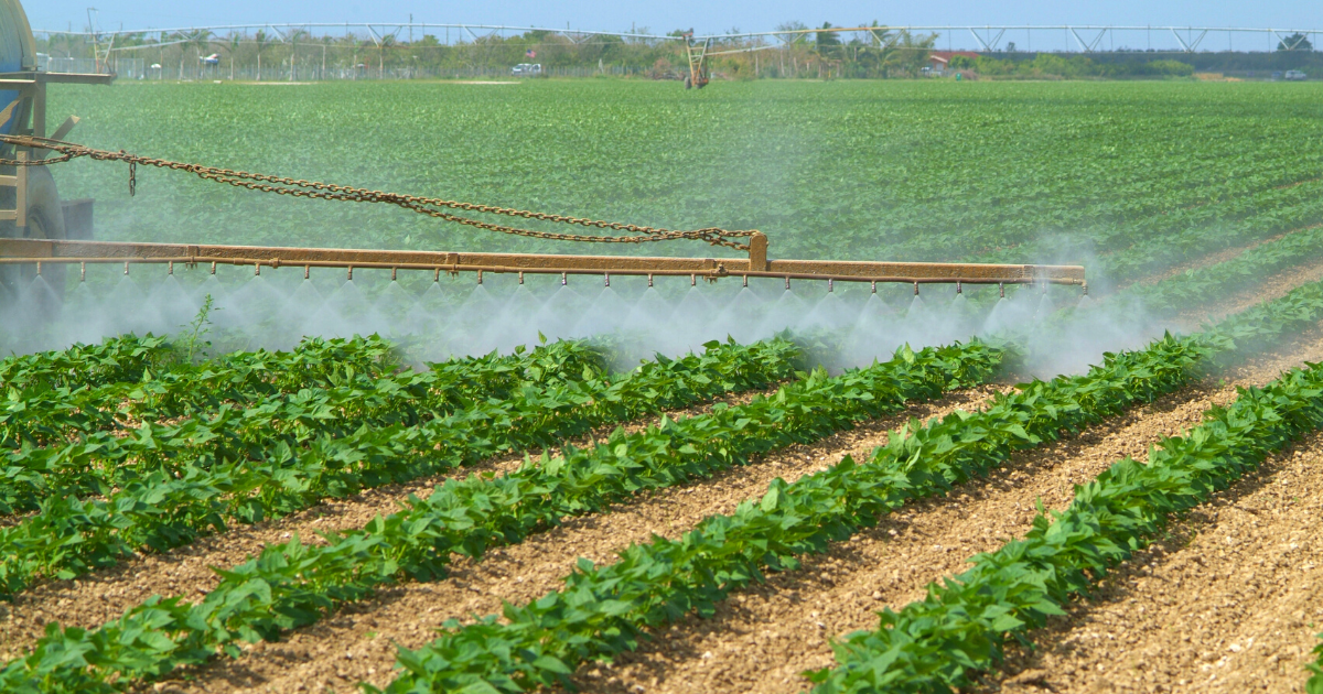 This agronomic image shows a sprayer