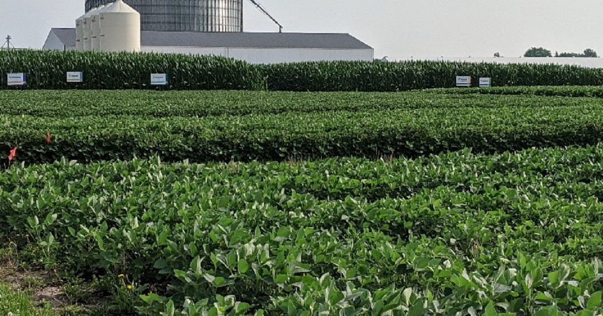 This agronomic image shows the Yarmouth, IA Grow More Experience site