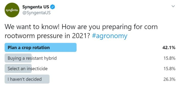 This image shows poll results about corn rootworm preparation
