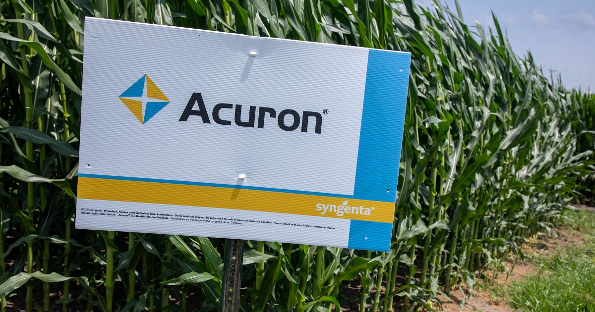 This agronomic image shows an Acuron sign at a field trial