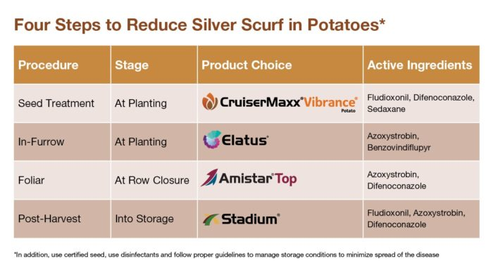 This chart shows potato product comparisons