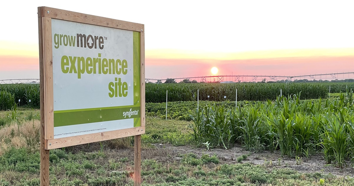 grow more experience sign at the site in scott city, kansas